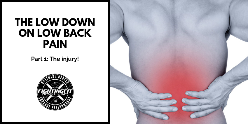 The Low Down on Low Back Pain