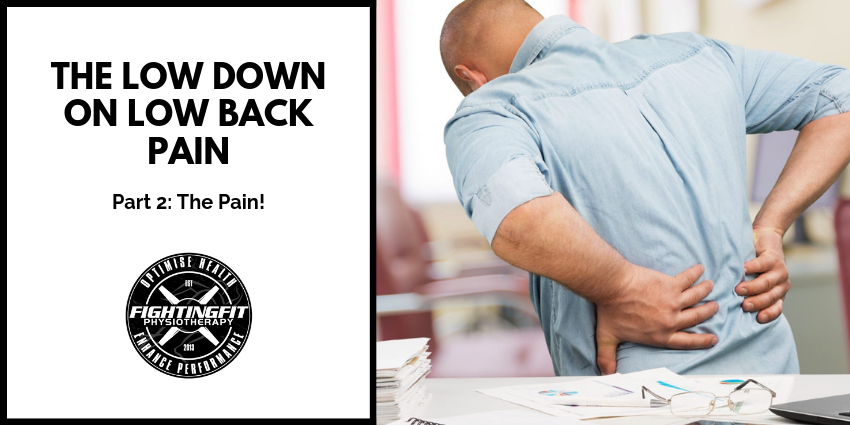 The low down on Lower Back Pain: Part 2